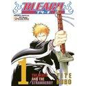 Bleach 01