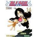 Bleach 14