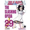 Bleach 29