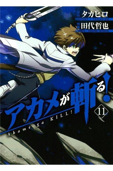 Przedpłata Akame ga Kill 11