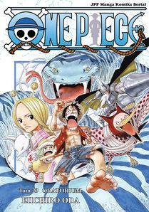 One Piece 29